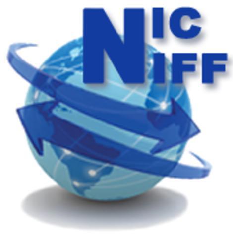 DESARROLLO NIC -NIFF