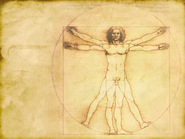 La anatomía de Da Vinci