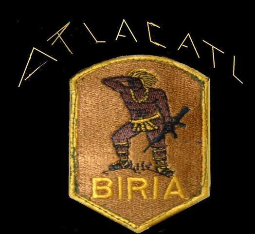 Batallones de Infanteria de Reacción Inmediata (BIRI)