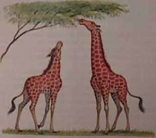 Lamarck Develops Hypothesis of Evolution