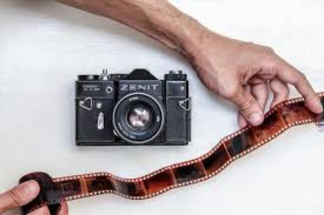 perfeccion de las plantas fotograficas