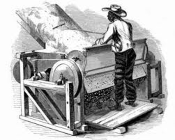 Creation Of the Cotton Gin