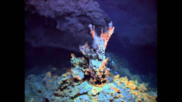 Deep sea hydrothermal vents and associated life around them discovered