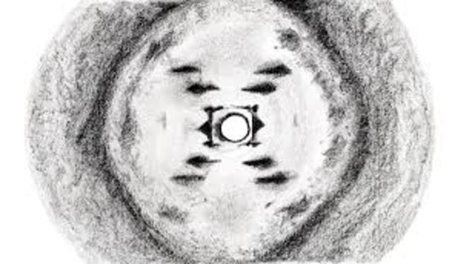 """Rosalind Franklin """"Image 51"""""""