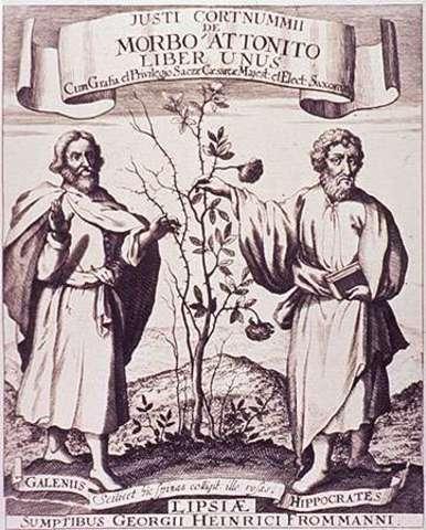 Galen of Pergamon Describes th Human Body