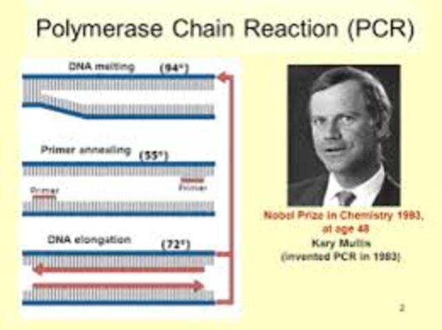 Kary Mullis develops Polymerase chain Reaction