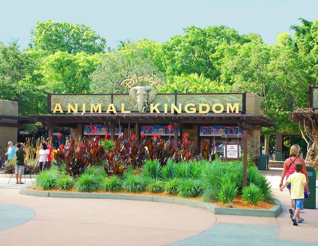 Animal Kingdom Theme Park Opens in Orlando