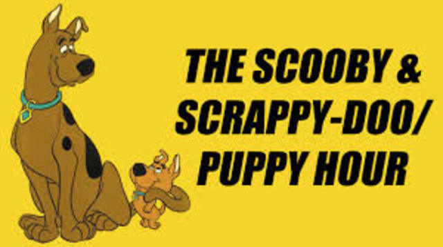 Scooby-doo and Scrappy-doo Shorts
