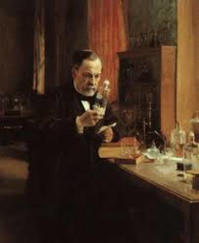 Pasteur descubre la vacuna contra la rabia. Esto eleva el promedio de vida de la sociedad.
