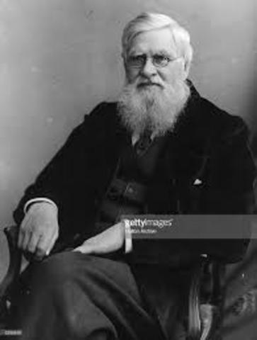 Alfred Wallace (Defensor de Darwin)