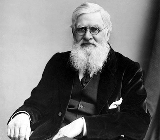 Alfred Wallace (1823- 1913)