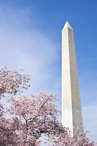 Building of The Washington Monument