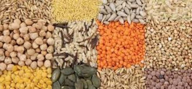 Increasing Food And Raw Materials