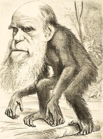 DARWINISMO  TRANSFORMACION  Y LAMARCKISMO