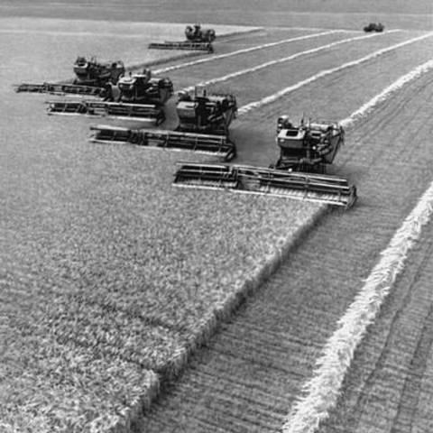 Реформа сельского хозяйства и её итоги