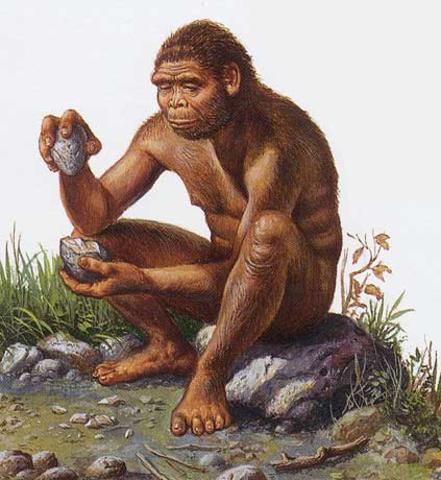 Aparición del Homo Erectus.