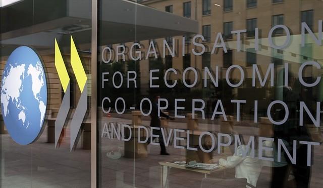 Educación de calidad para todos, Organización para la Cooperación y el Desarrollo Económicos