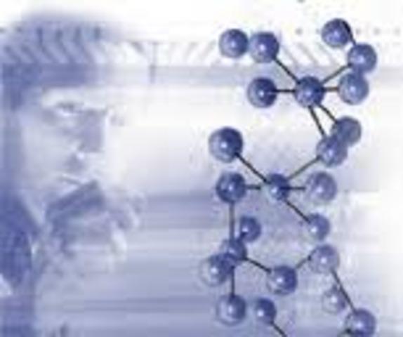 Hermann Staudinger aventuró que los plásticos  se componían de moléculas gigantes