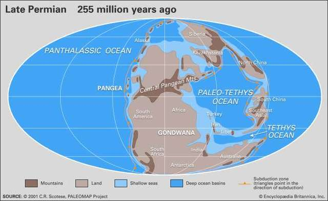 """End-Permian (sometimes called """"Permian-Triassic"""")"""