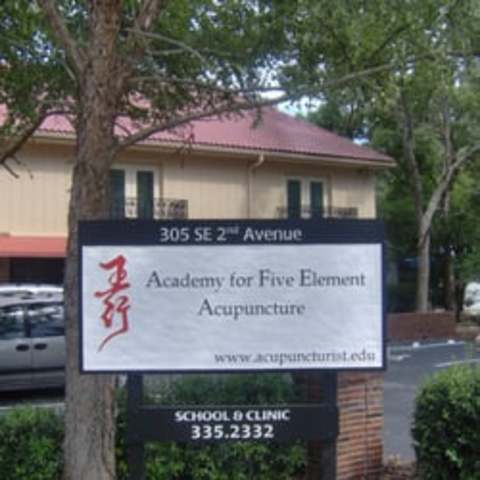 A Class on Acupuncture Theory
