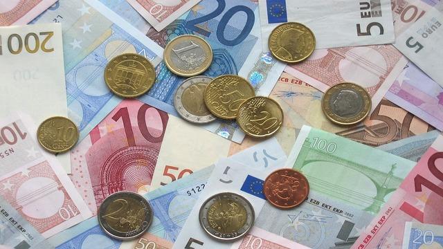 Entrada del euro en circulación