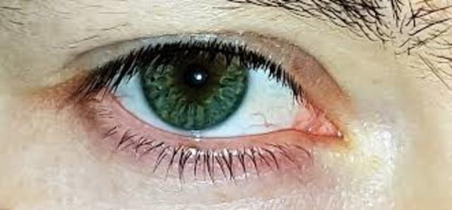 El ojo artificial