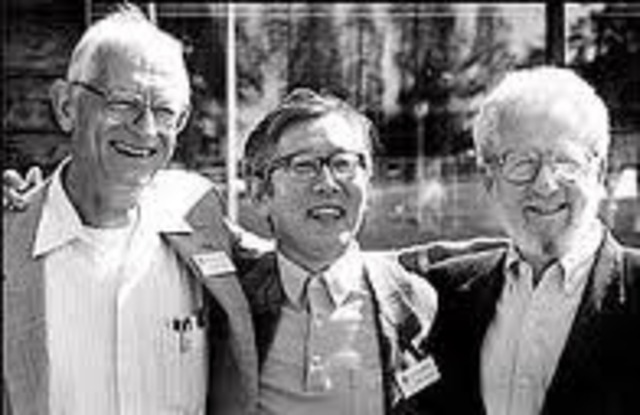 Alan Heeger, Alan MacDiarmid y Hideki Shirakawa