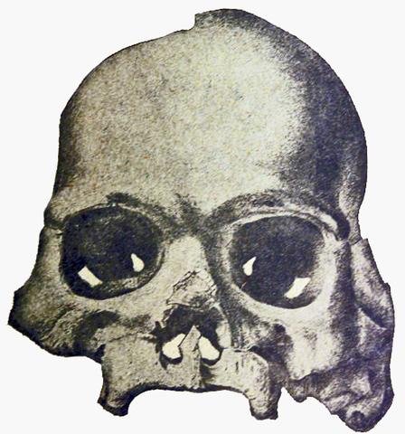 The Calaveras Skull