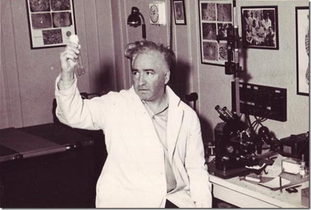 Wilhelm Reich y los acumuladores de orgón