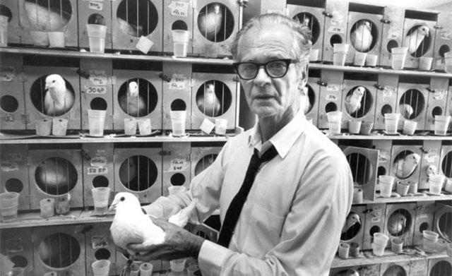 B.F Skinner: experimento con la paloma