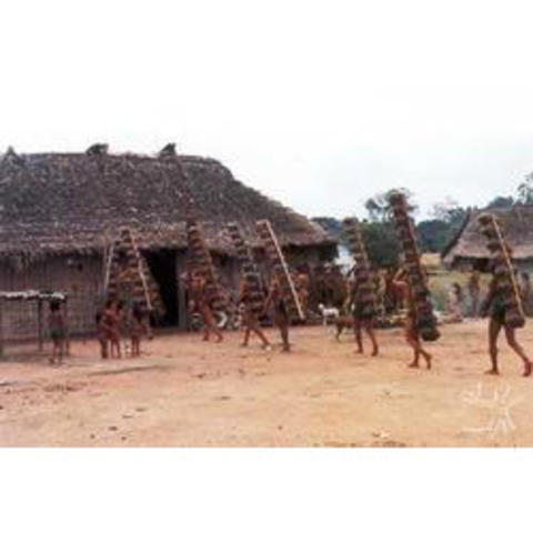 Kayapo Villages and Relentless Invasions (1980's)