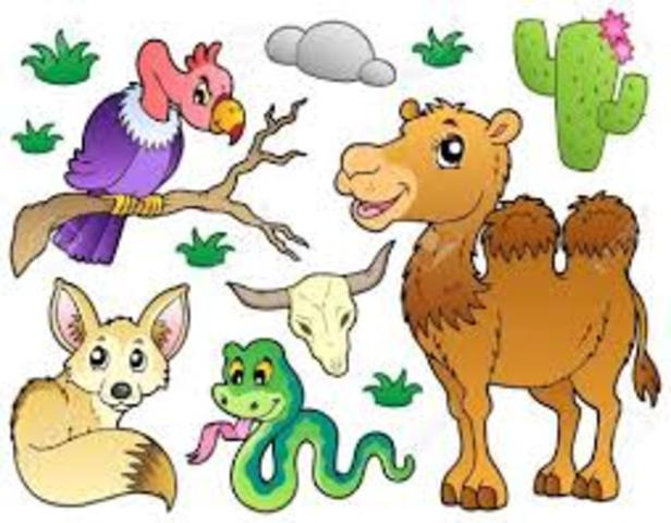 Definición de animales vertebrados e invertebrados