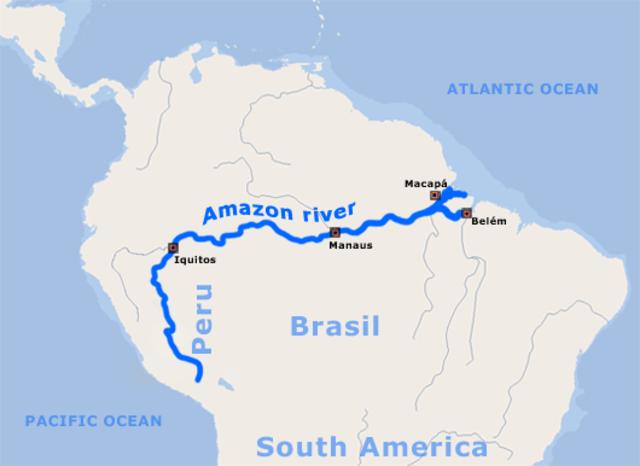 Amerigo Vespucci: Brazil