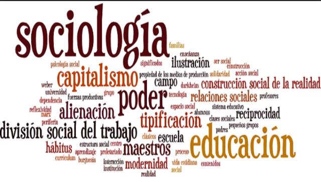 Aporte Sociológico