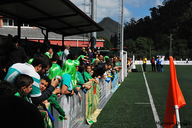 Temporada 2012/13, Primera Regional