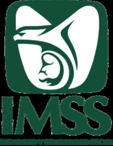 """""""Instituto Mexicano del Seguro Social"""""""