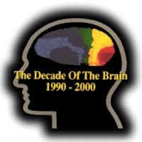 Año 1990 declarada la década del cerebro