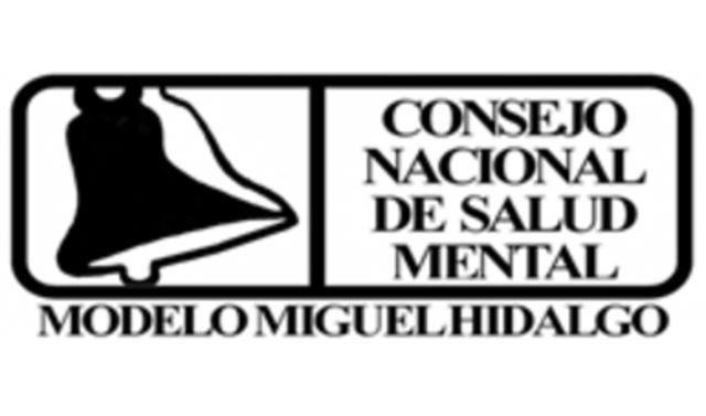 Directora General del Secretariado Técnico del Consejo Nacional de Salud Mental