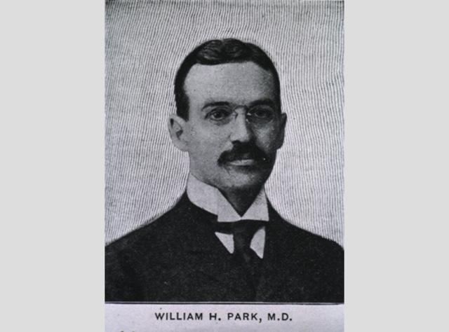 AVANCE DE WILLIAM PARK