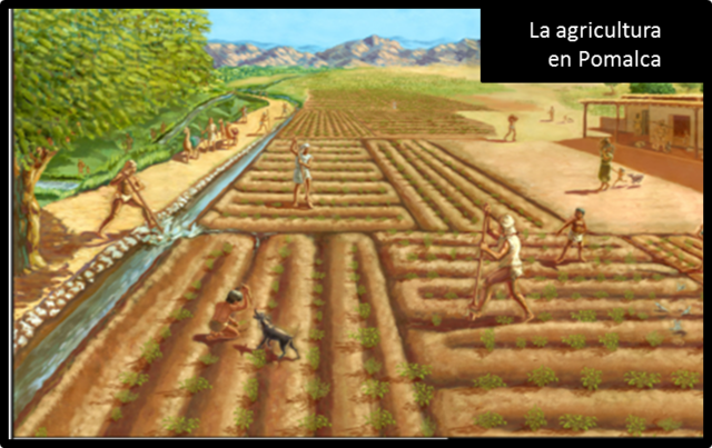 Menos de 1000 años se inventa la agricultura