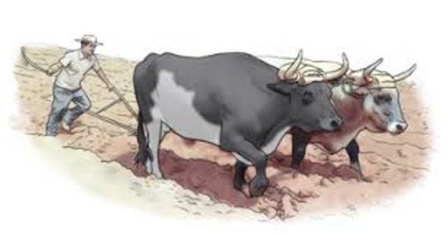 El hombre busca la ayuda de los animales para  cubrir la fuerza que necesita y extenderse mas allá de los limites que tenia