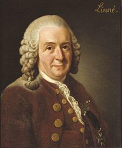 Carlos Linneo (1707- 1778)