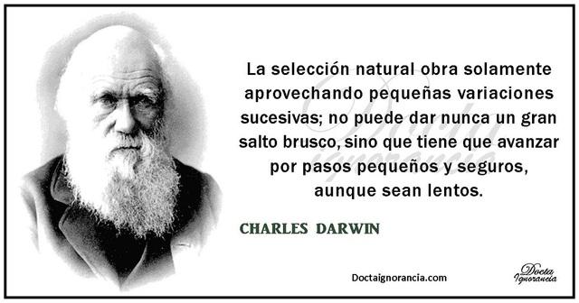 Postura de Darwin