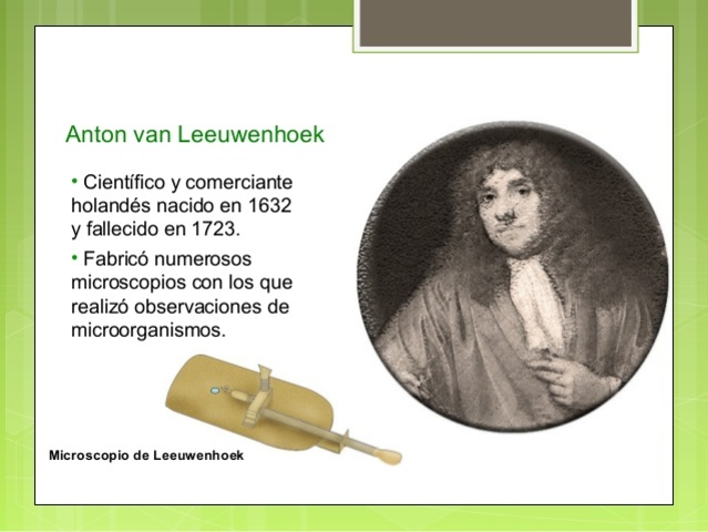 Anton Van Leeuwenhoek (Teoría celular)