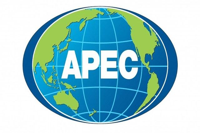 Marco de Privacidad del Foro de Cooperación Económica Asia Pacífico (APEC)