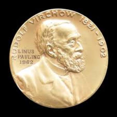 Rudolf Virchow - Revolucion Medicina Social