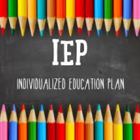 Individualized Educational Programs