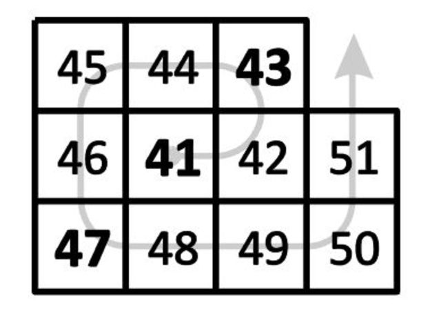 Espiral 41