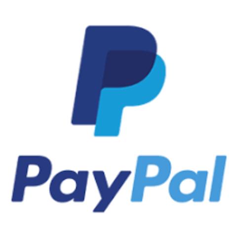 PayPal Rey de los pagos en E-commerce