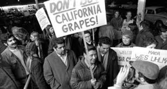 UFW Grape Boycott
